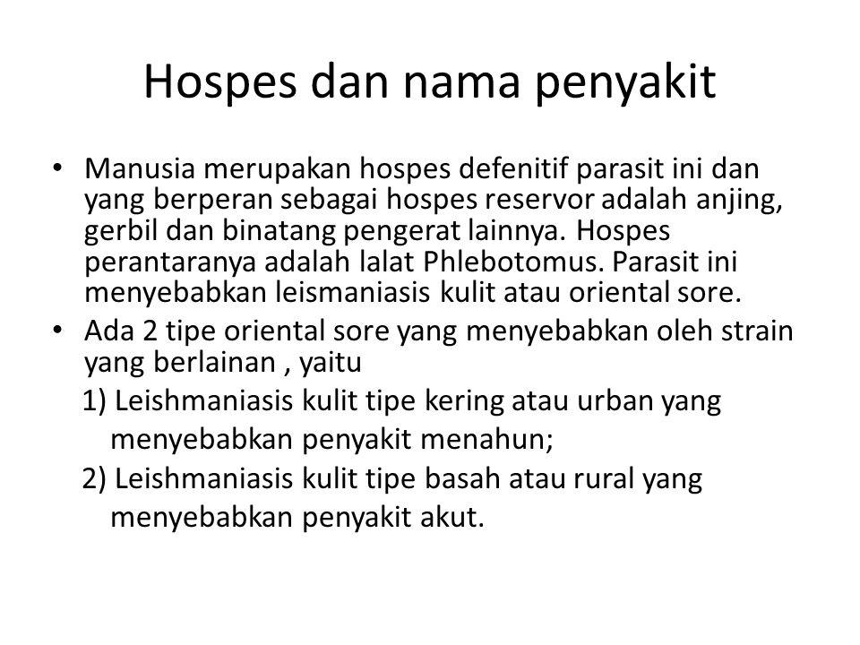 Hospes dan nama penyakit Manusia merupakan hospes defenitif parasit ini dan yang berperan sebagai hospes reservor adalah anjing, gerbil dan binatang p