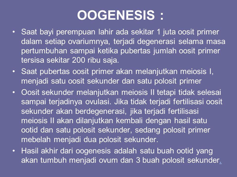 OOGENESIS : Saat bayi perempuan lahir ada sekitar 1 juta oosit primer dalam setiap ovariumnya, terjadi degenerasi selama masa pertumbuhan sampai ketik