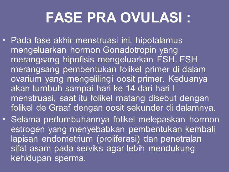 FASE PRA OVULASI : Pada fase akhir menstruasi ini, hipotalamus mengeluarkan hormon Gonadotropin yang merangsang hipofisis mengeluarkan FSH. FSH merang