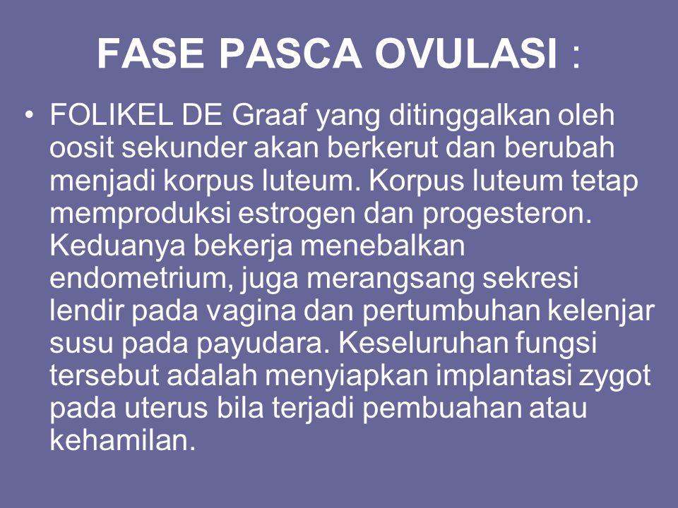 FASE PASCA OVULASI : FOLIKEL DE Graaf yang ditinggalkan oleh oosit sekunder akan berkerut dan berubah menjadi korpus luteum. Korpus luteum tetap mempr