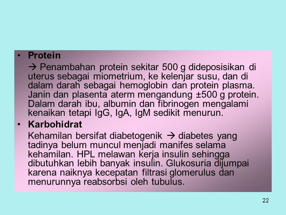 22 Protein  Penambahan protein sekitar 500 g dideposisikan di uterus sebagai miometrium, ke kelenjar susu, dan di dalam darah sebagai hemoglobin dan