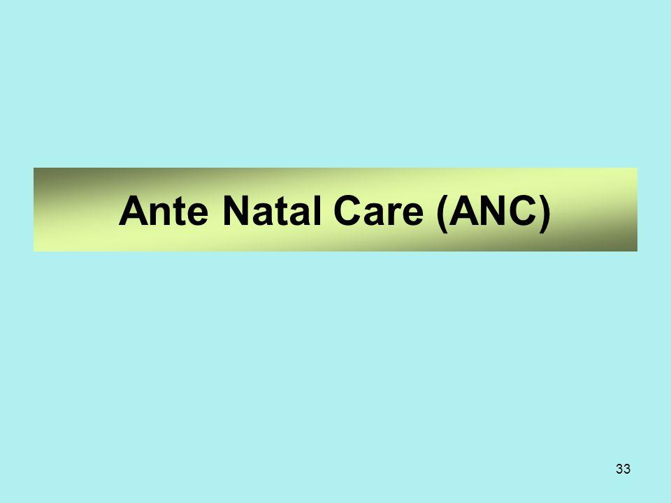 33 Ante Natal Care (ANC)