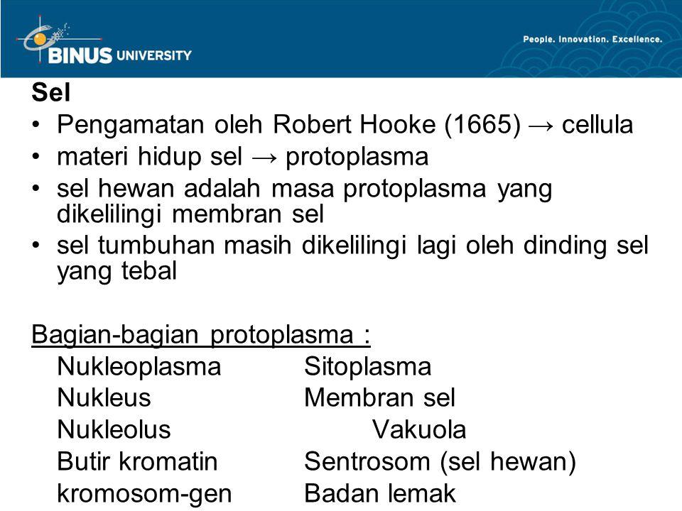 Hukum Segregasi Mendel 1.Versi alternatif gen (alel-alel yang berbeda) menjelaskan terjadinya variasi pada karakter yang diwarisi 2.Untuk setiap karakter, organisme mawarisi dua alel, satu dari masing-masing induk 3.Jika kedua alel berbeda, maka salah satunya, alel dominan diekspresikan sepenuhnya dalam penampakan organisme ; alel satunya, alel resesif, tidak mempunyai efek yang jelas pada penampakan organisme 4.Kedua alel untuk setiap karakter berpisah selama produksi gamet