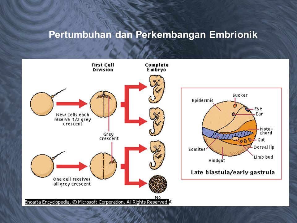 Pertumbuhan dan Perkembangan Embrionik