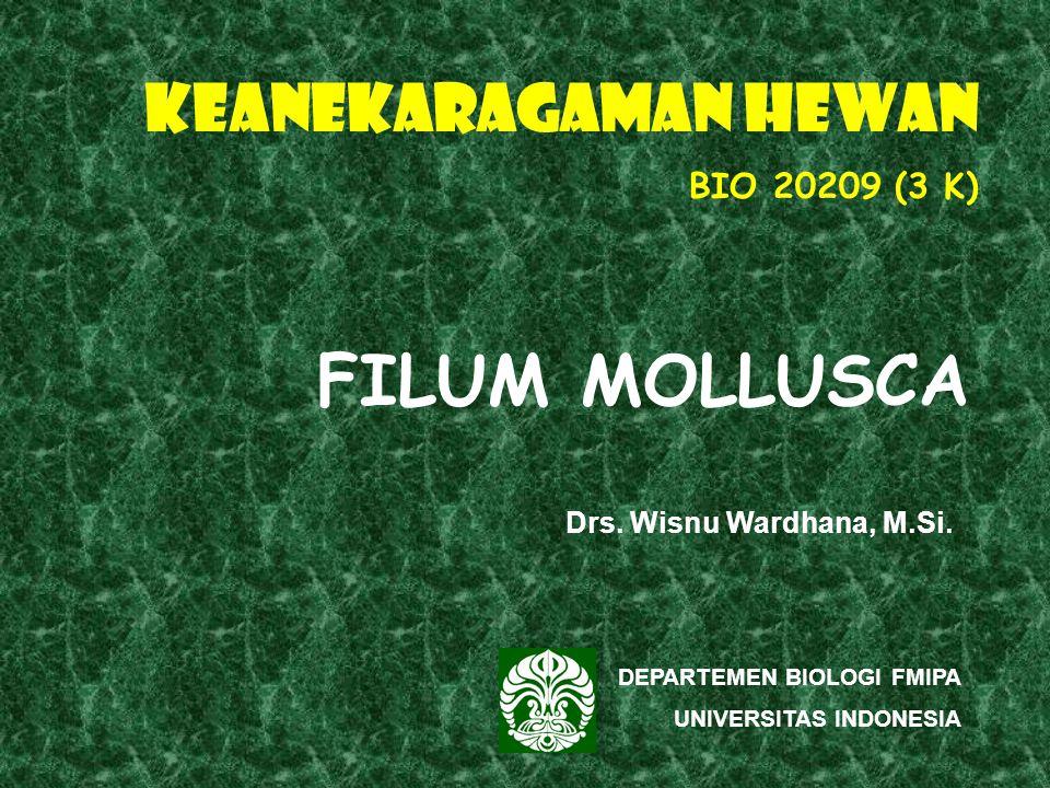 KEANEKARAGAMAN HEWAN BIO 20209 (3 K) DEPARTEMEN BIOLOGI FMIPA UNIVERSITAS INDONESIA FILUM MOLLUSCA Drs.
