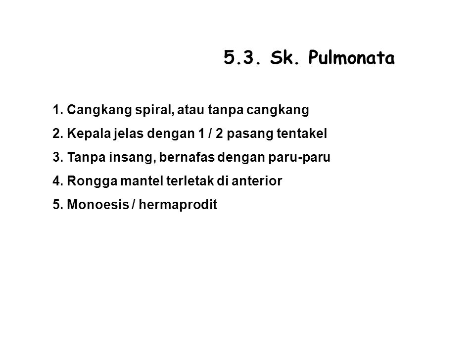 5.3.Sk. Pulmonata 1. Cangkang spiral, atau tanpa cangkang 2.