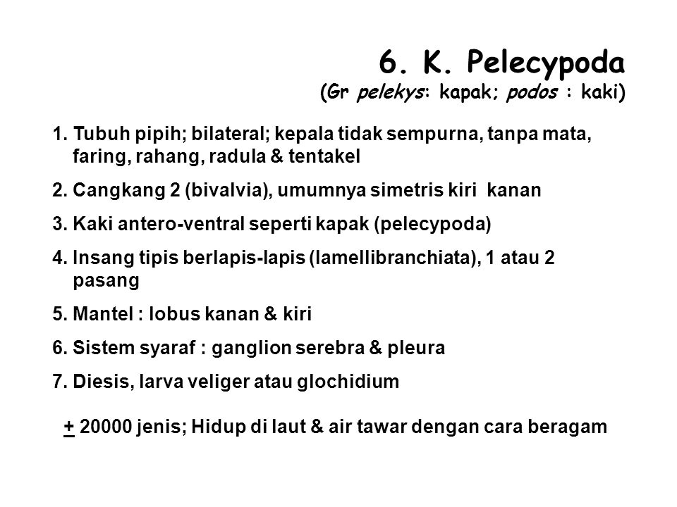 6.K. Pelecypoda (Gr pelekys: kapak; podos : kaki) 1.