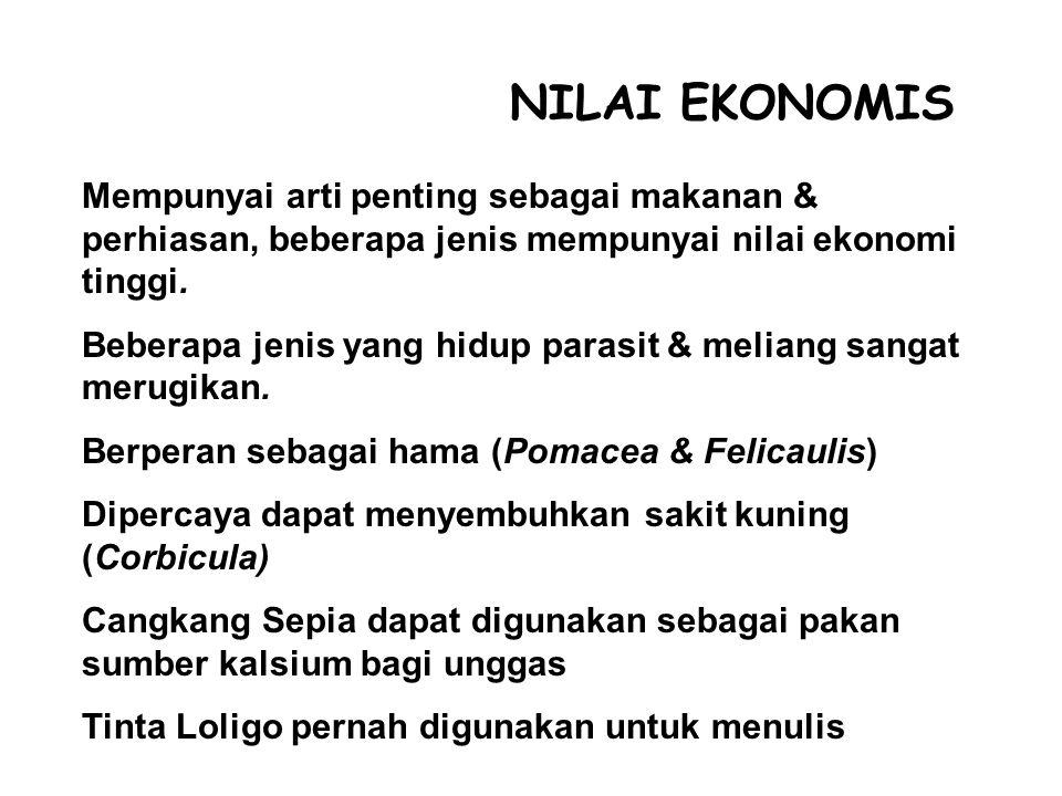 NILAI EKONOMIS Mempunyai arti penting sebagai makanan & perhiasan, beberapa jenis mempunyai nilai ekonomi tinggi.