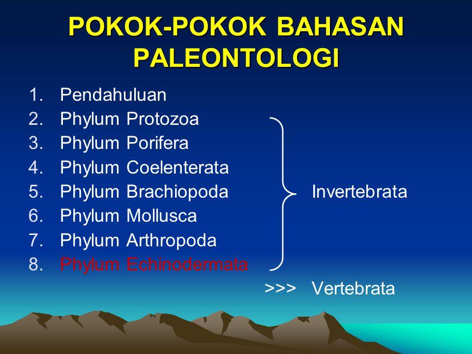 Peranan Fosil Echinodermata dalam Geologi Fosil Echinodermata sangat membantu dalam penentuan lingkungan pengendapan/sedimentasi, terutama lingkungan laut/marine, serta membantu dalam penentuan umur dalam batuan