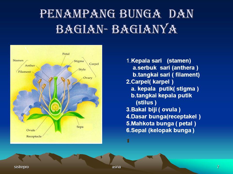 sistreproasna7 Penampang bunga dan bagian- bagianya 1.Kepala sari (stamen) a.serbuk sari (anthera ) b.tangkai sari ( filament) 2.Carpel( karpel ) a.