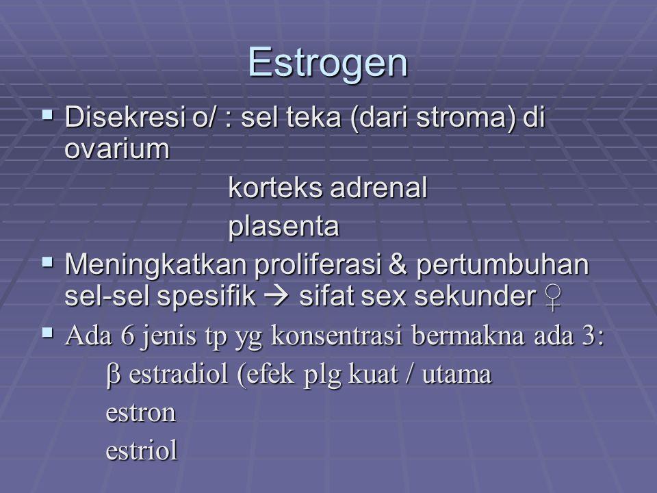 Estrogen  Disekresi o/ : sel teka (dari stroma) di ovarium korteks adrenal korteks adrenal plasenta plasenta  Meningkatkan proliferasi & pertumbuhan