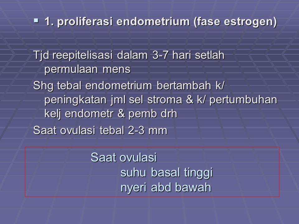 Saat ovulasi suhu basal tinggi nyeri abd bawah  1. proliferasi endometrium (fase estrogen) Tjd reepitelisasi dalam 3-7 hari setlah permulaan mens Shg