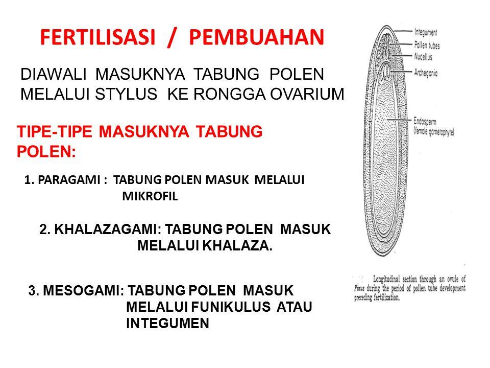 FERTILISASI / PEMBUAHAN DIAWALI MASUKNYA TABUNG POLEN MELALUI STYLUS KE RONGGA OVARIUM TIPE-TIPE MASUKNYA TABUNG POLEN: 1. PARAGAMI : TABUNG POLEN MAS
