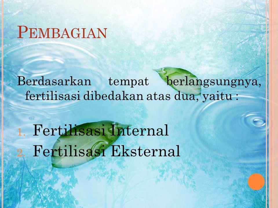 F UNGSI F ERTILISASI Adapun Fungsi dari Fertilisasi yaitu : 1. Untuk menyatukan kumpulan kromosom haploid dari dua individu menjadi sebuah sel diploid