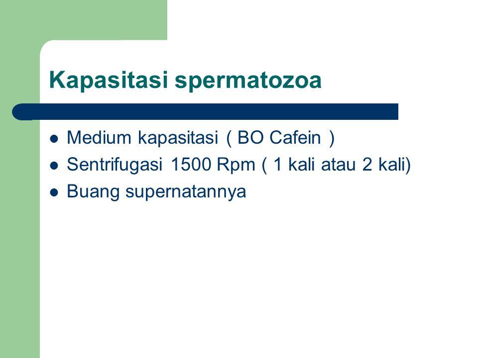 Kapasitasi spermatozoa Medium kapasitasi ( BO Cafein ) Sentrifugasi 1500 Rpm ( 1 kali atau 2 kali) Buang supernatannya