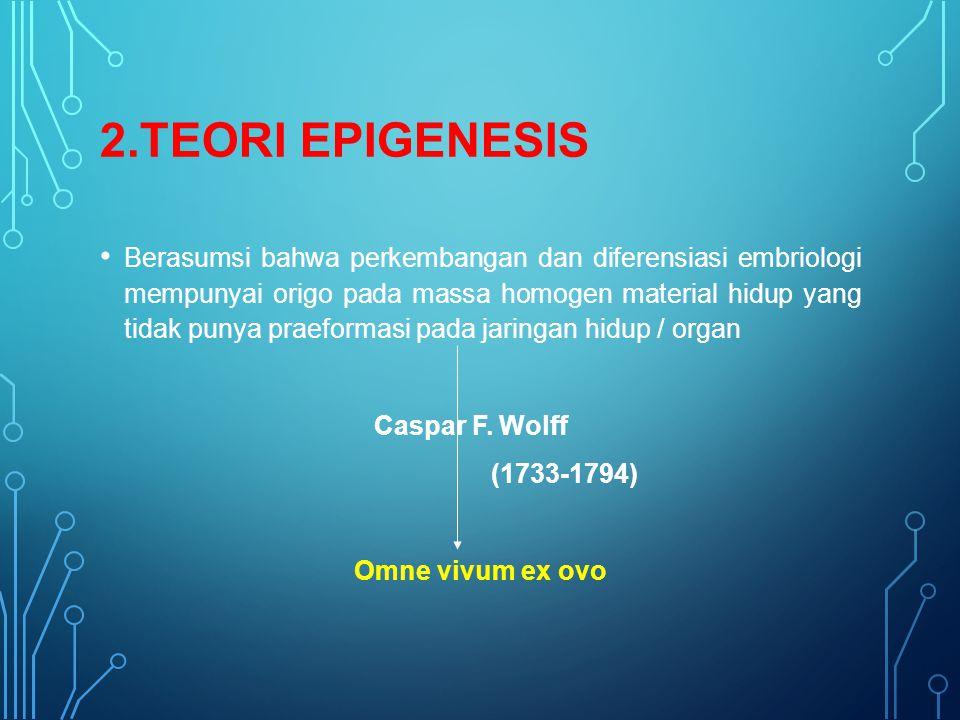 2.TEORI EPIGENESIS Berasumsi bahwa perkembangan dan diferensiasi embriologi mempunyai origo pada massa homogen material hidup yang tidak punya praeformasi pada jaringan hidup / organ Caspar F.