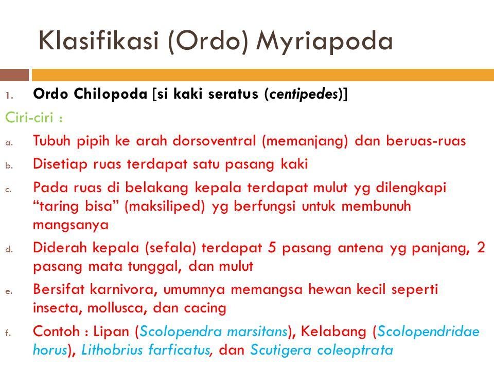 Klasifikasi (Ordo) Myriapoda 1. Ordo Chilopoda [si kaki seratus (centipedes)] Ciri-ciri : a. Tubuh pipih ke arah dorsoventral (memanjang) dan beruas-r