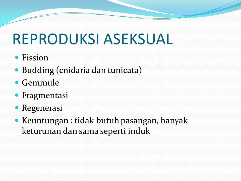 Siklus dan pola reproduksi Menghemat sumber daya dan saat banyak energi Petunjuk hormon dan lingkungan (suhu musiman, curah hujan, panjang siang hari, siklus bulan) Reproduksi aseksual dan seksual dapat bergantian/tidak.