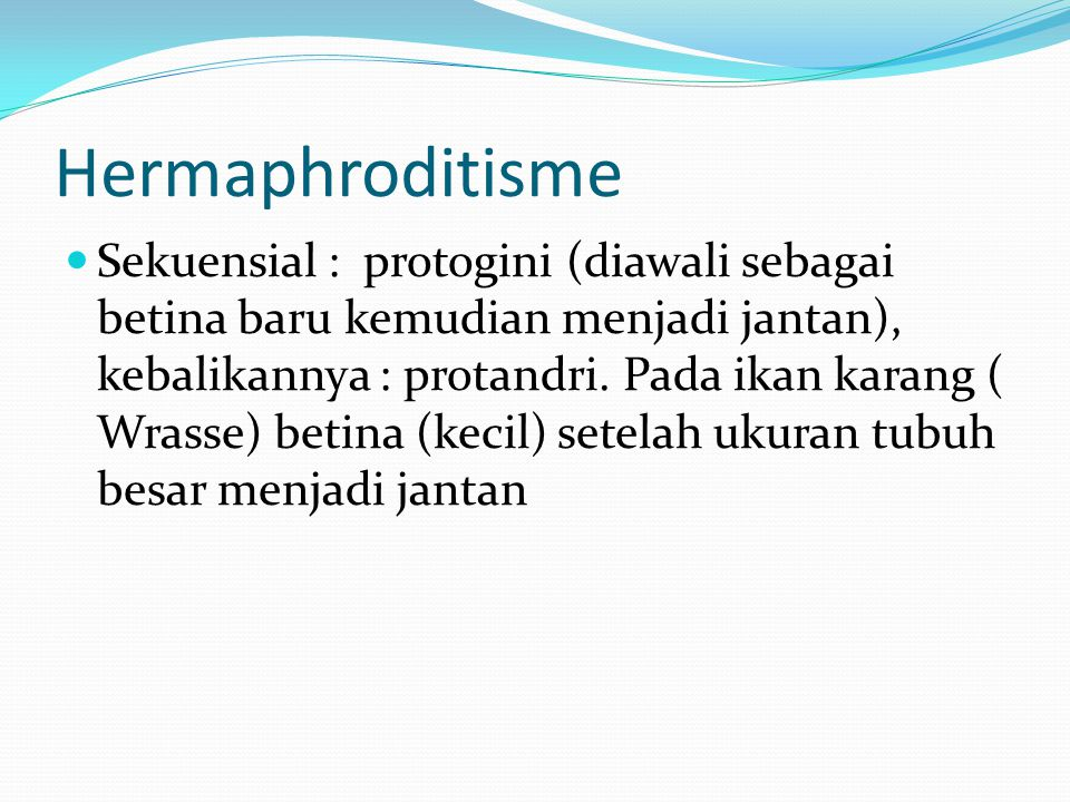 Hermaphroditisme Sekuensial : protogini (diawali sebagai betina baru kemudian menjadi jantan), kebalikannya : protandri.
