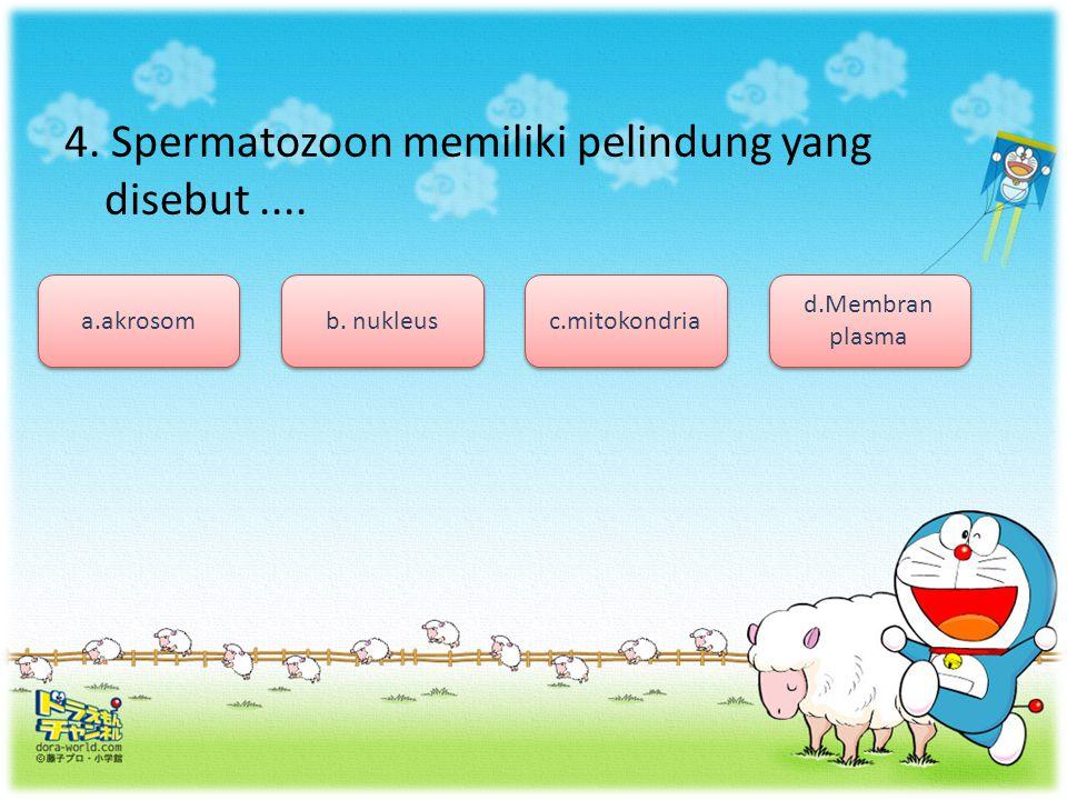 3.Proses pembentukan sperma pada manusia ialah....