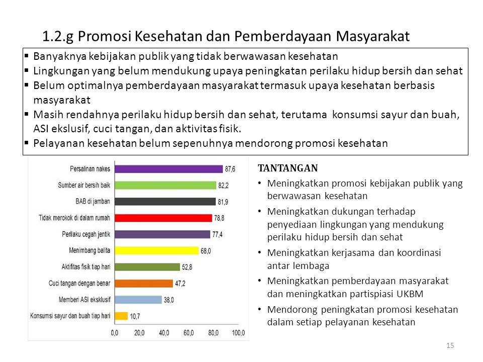 1.2.g Promosi Kesehatan dan Pemberdayaan Masyarakat 15  Banyaknya kebijakan publik yang tidak berwawasan kesehatan  Lingkungan yang belum mendukung