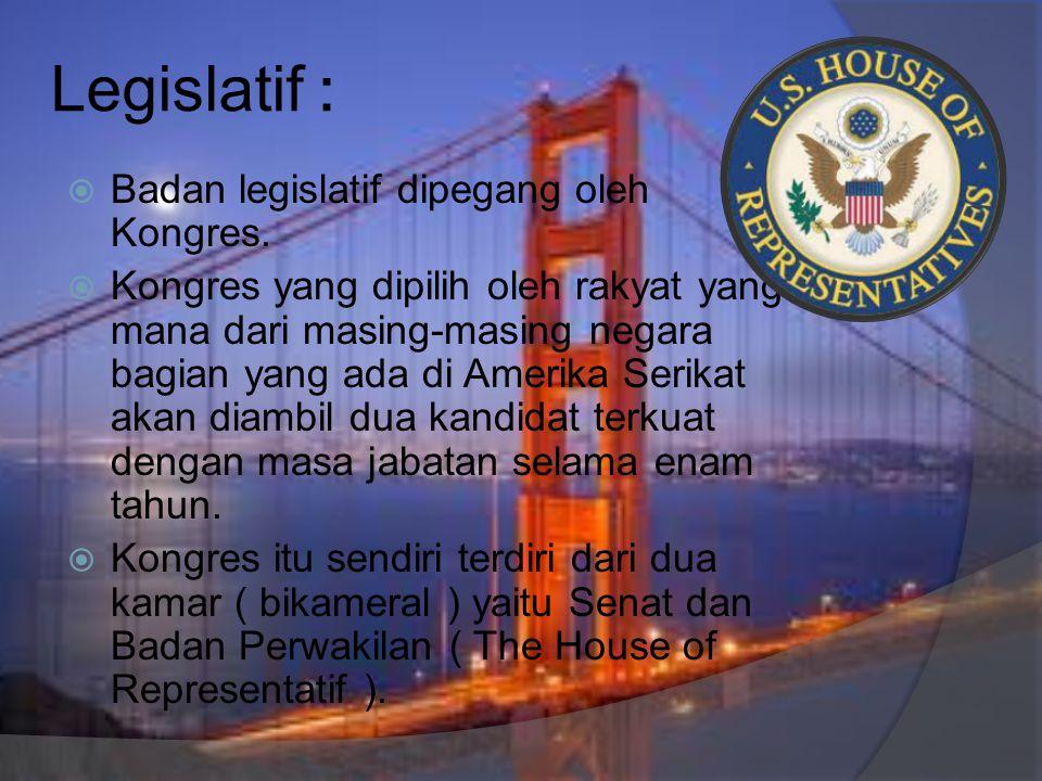 Legislatif :  Badan legislatif dipegang oleh Kongres.  Kongres yang dipilih oleh rakyat yang mana dari masing-masing negara bagian yang ada di Ameri