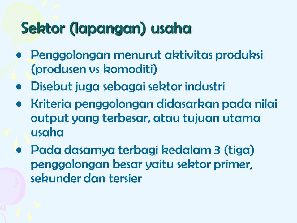 Sektor (lapangan) usaha Penggolongan menurut aktivitas produksi (produsen vs komoditi) Disebut juga sebagai sektor industri Kriteria penggolongan dida