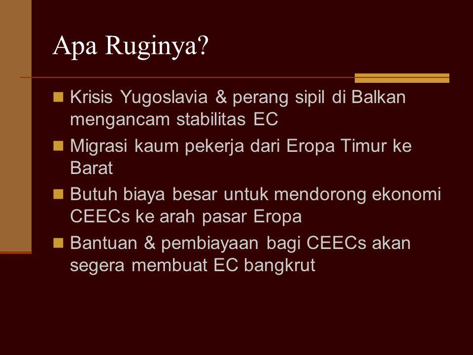 Apa Ruginya? Krisis Yugoslavia & perang sipil di Balkan mengancam stabilitas EC Migrasi kaum pekerja dari Eropa Timur ke Barat Butuh biaya besar untuk