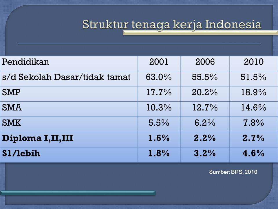 Sumber: BPS, 2010