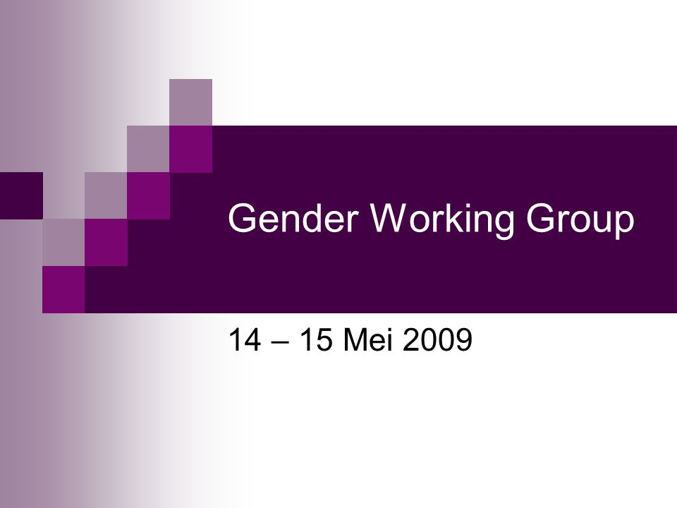 Gender Working Group 14 – 15 Mei 2009