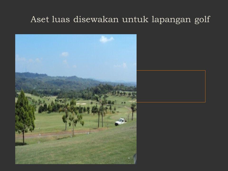 Contoh : Aset non operasional untuk rekreasi