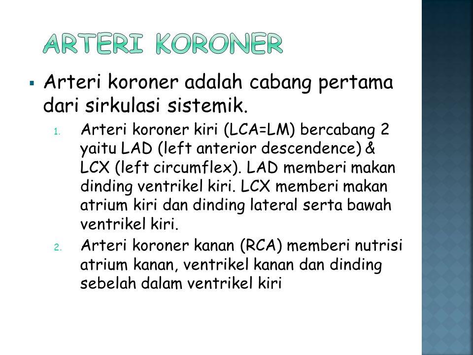  Arteri koroner adalah cabang pertama dari sirkulasi sistemik. 1. Arteri koroner kiri (LCA=LM) bercabang 2 yaitu LAD (left anterior descendence) & LC
