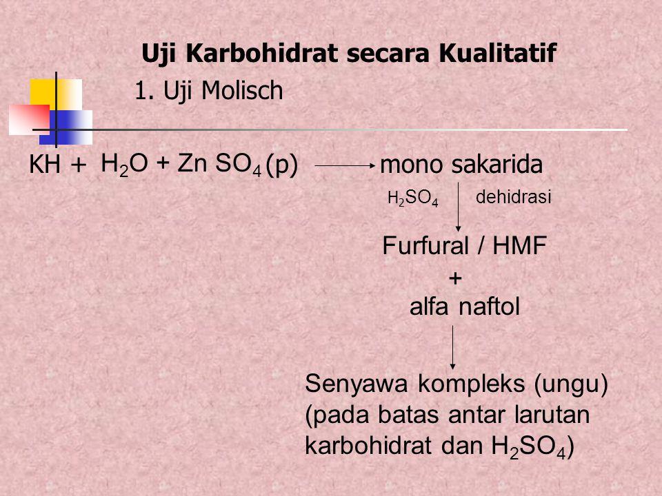 Senyawa kompleks (ungu) (pada batas antar larutan karbohidrat dan H 2 SO 4 ) Uji Karbohidrat secara Kualitatif 1. Uji Molisch KH + (p) mono sakarida H