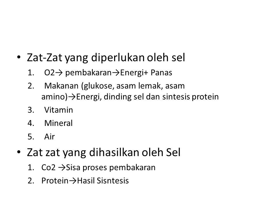 Zat-Zat yang diperlukan oleh sel 1.O2→ pembakaran→Energi+ Panas 2.Makanan (glukose, asam lemak, asam amino)→Energi, dinding sel dan sintesis protein 3.Vitamin 4.Mineral 5.Air Zat zat yang dihasilkan oleh Sel 1.Co2 →Sisa proses pembakaran 2.Protein→Hasil Sisntesis