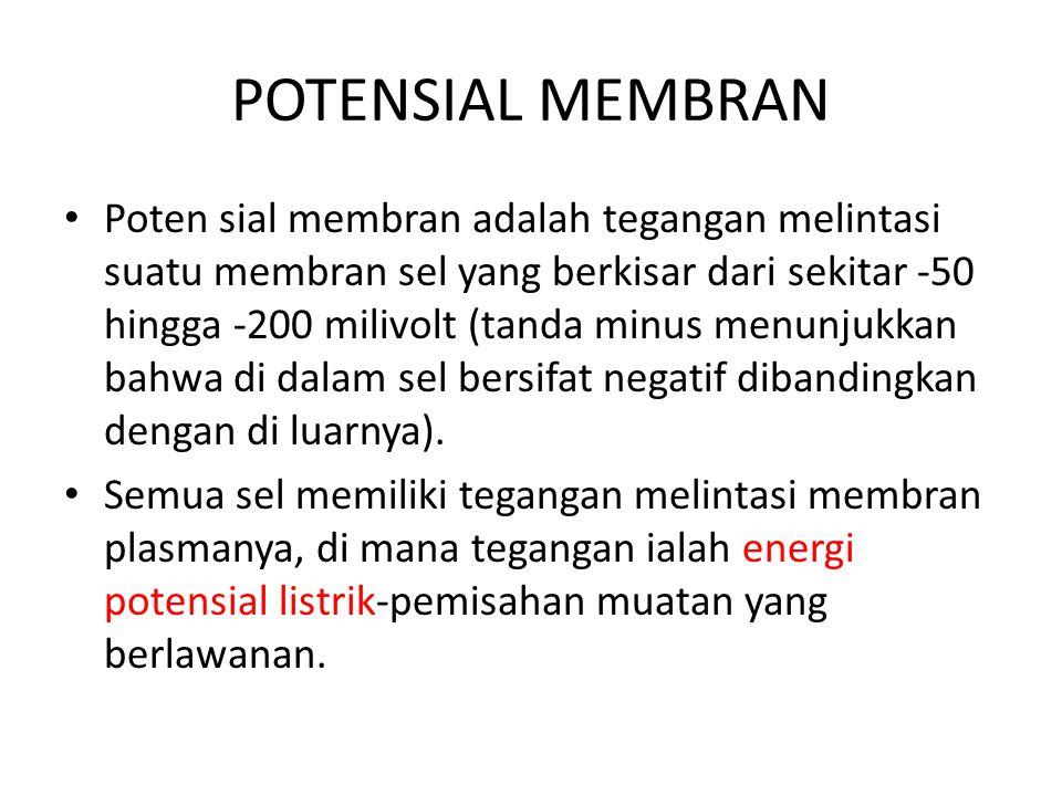 POTENSIAL MEMBRAN Poten sial membran adalah tegangan melintasi suatu membran sel yang berkisar dari sekitar -50 hingga -200 milivolt (tanda minus menunjukkan bahwa di dalam sel bersifat negatif dibandingkan dengan di luarnya).