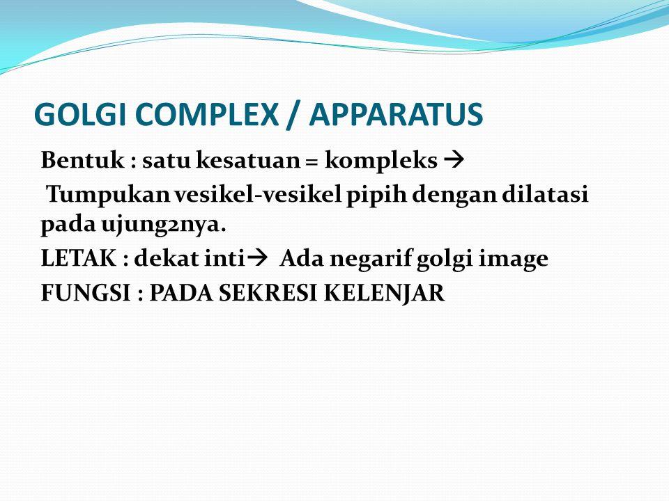 GOLGI COMPLEX / APPARATUS Bentuk : satu kesatuan = kompleks  Tumpukan vesikel-vesikel pipih dengan dilatasi pada ujung2nya. LETAK : dekat inti  Ada