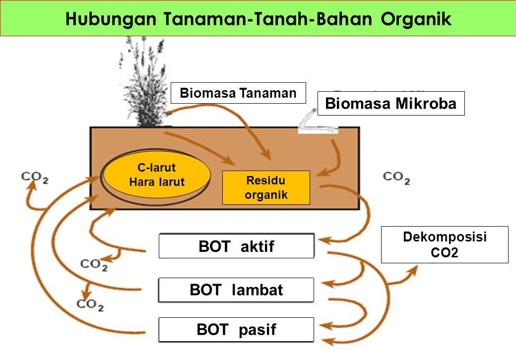 Hubungan Tanaman-Tanah-Bahan Organik Dekomposisi CO2 Biomasa Mikroba Biomasa Tanaman BOT aktif BOT lambat BOT pasif Residu organik C-larut Hara larut