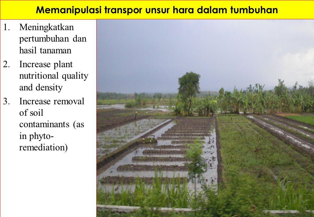 Memanipulasi transpor unsur hara dalam tumbuhan 1.Meningkatkan pertumbuhan dan hasil tanaman 2.Increase plant nutritional quality and density 3.Increa