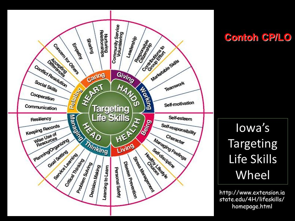 Iowa's Targeting Life Skills Wheel http://www.extension.ia state.edu/4H/lifeskills/ homepage.html Contoh CP/LO