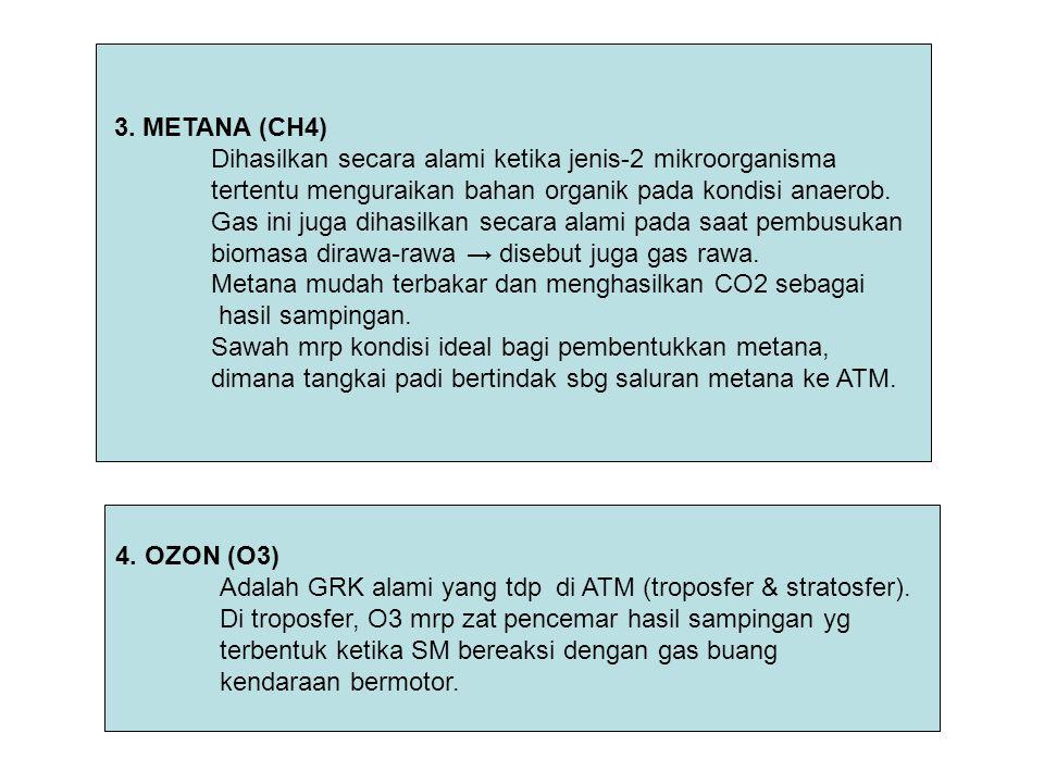 3. METANA (CH4) Dihasilkan secara alami ketika jenis-2 mikroorganisma tertentu menguraikan bahan organik pada kondisi anaerob. Gas ini juga dihasilkan