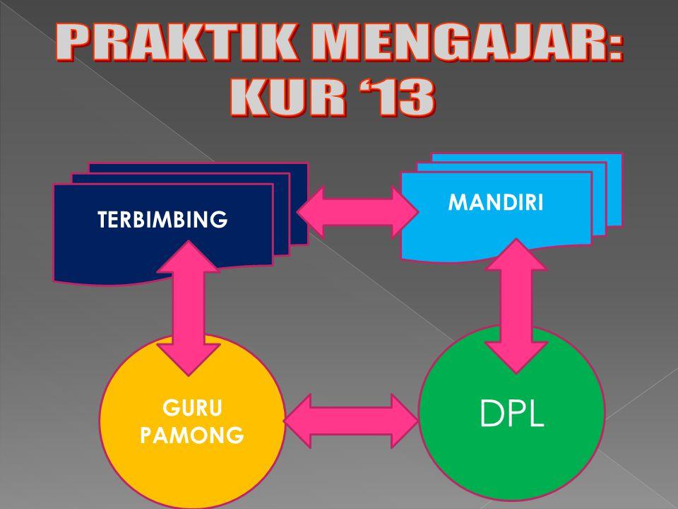 TERBIMBING MANDIRI GURU PAMONG DPL