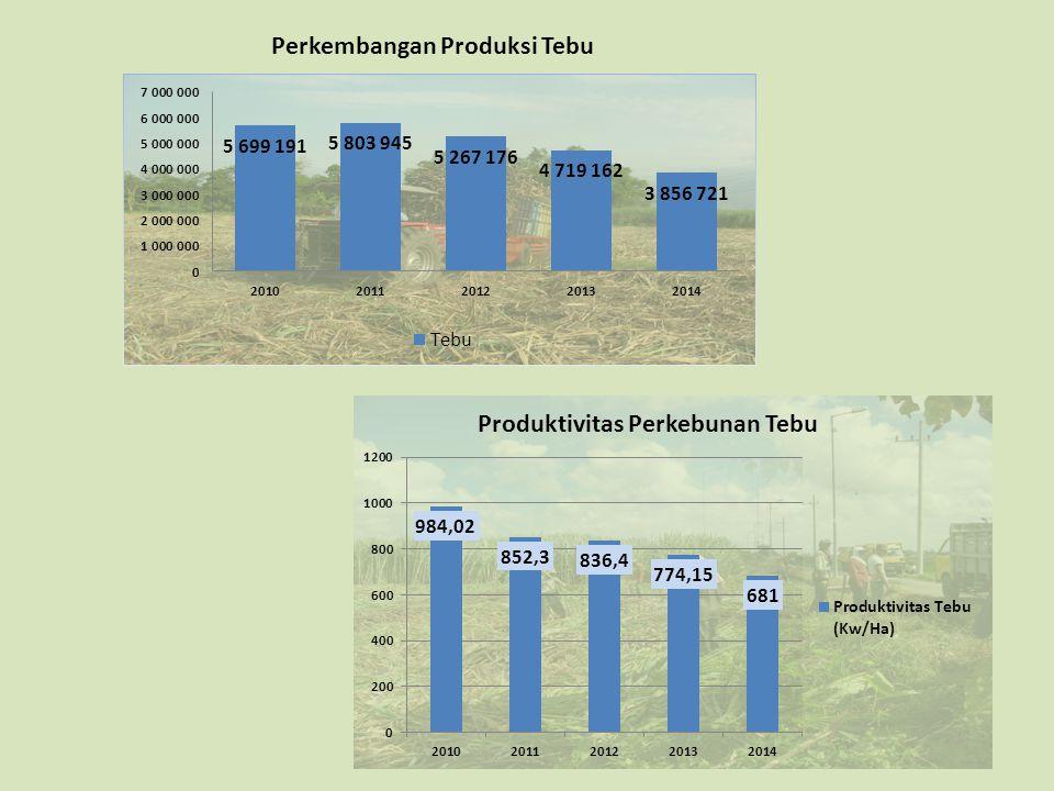 Perkembangan Produksi Tebu