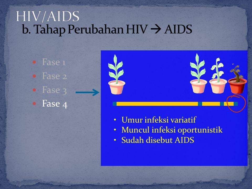 Fase 1 Fase 2 Fase 3 Fase 4 Umur infeksi variatif Muncul infeksi oportunistik Sudah disebut AIDS