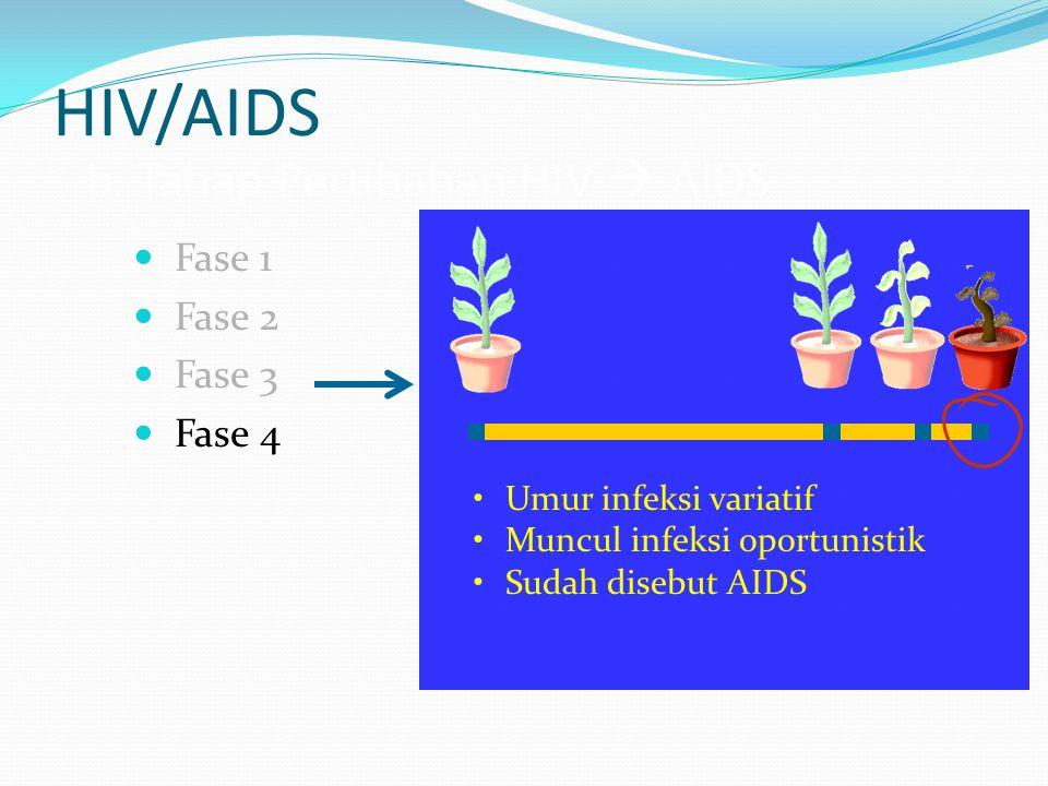 HIV/AIDS b. Tahap Perubahan HIV  AIDS Fase 1 Fase 2 Fase 3 Fase 4 Umur infeksi variatif Muncul infeksi oportunistik Sudah disebut AIDS