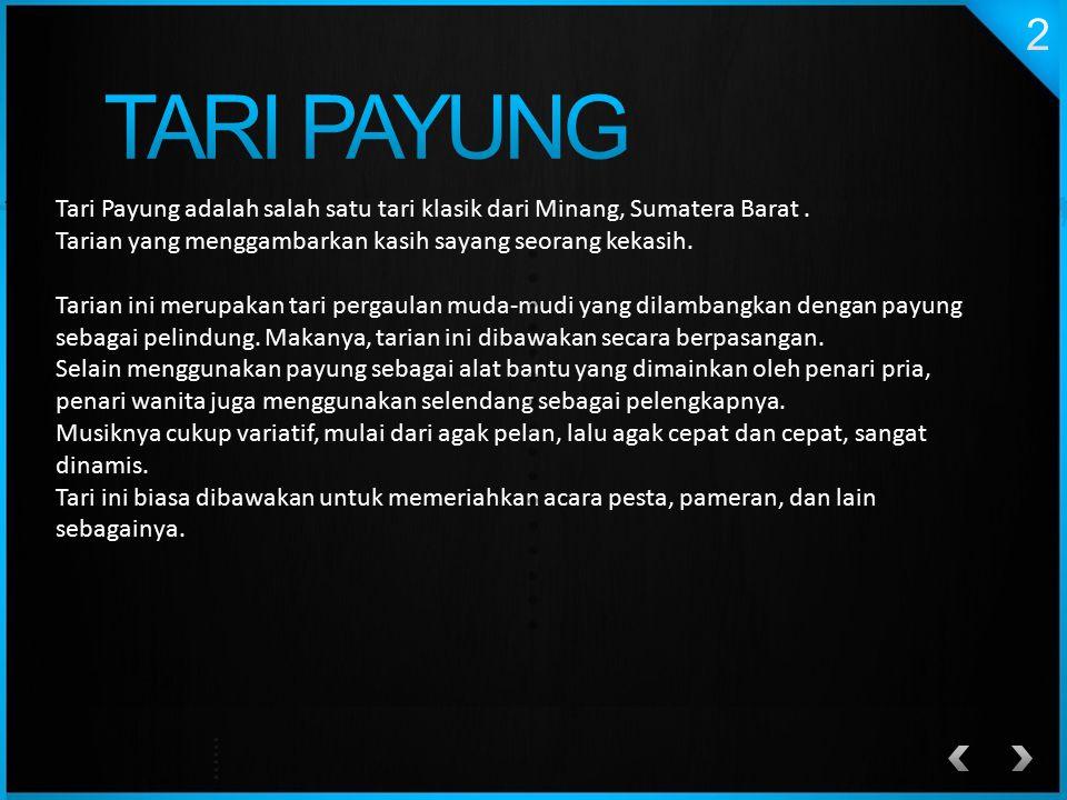 Tari Payung adalah salah satu tari klasik dari Minang, Sumatera Barat. Tarian yang menggambarkan kasih sayang seorang kekasih. Tarian ini merupakan ta