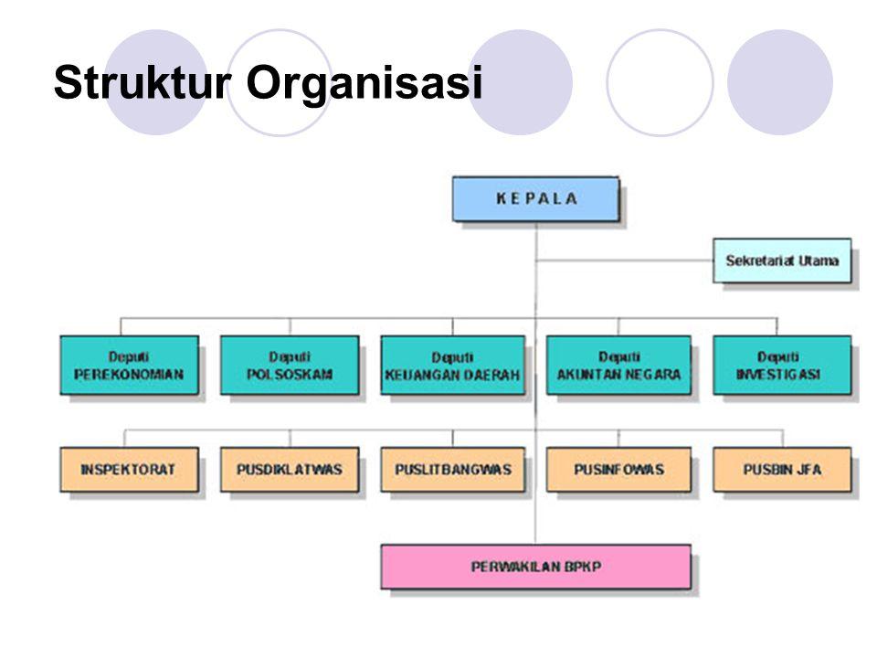 SDM Total pegawai BPKP sebesar 5297 pegawai terdiri dari:  Struktural 371 orang (7%)  Fungsional Auditor: 2.966 orang (56%)  Fungsional Non Auditor: 212 orang (4%)  Fungsional Umum: 1536 orang (28%)  Dipekerjakan: 212 orang (4%)