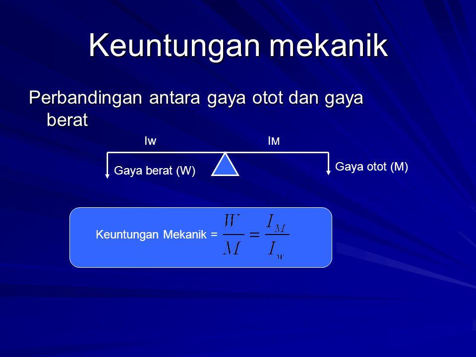 Keuntungan mekanik Perbandingan antara gaya otot dan gaya berat Gaya berat (W) Gaya otot (M) IwIMIM Keuntungan Mekanik =