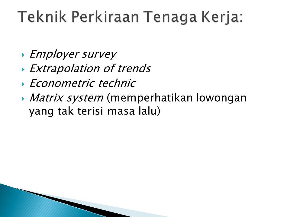  Employer survey  Extrapolation of trends  Econometric technic  Matrix system (memperhatikan lowongan yang tak terisi masa lalu)