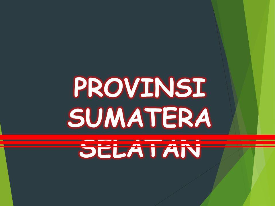 Sinkronisasi Rencana Prioritas Pembangunan Kota Lubuk Linggau dengan Provinsi Sumatera Selatan dan Nasional Tahun 2016 Tata Kelola Pemerintahan Yang Baik, Keamanan dan Ketertiban Masyarakat.