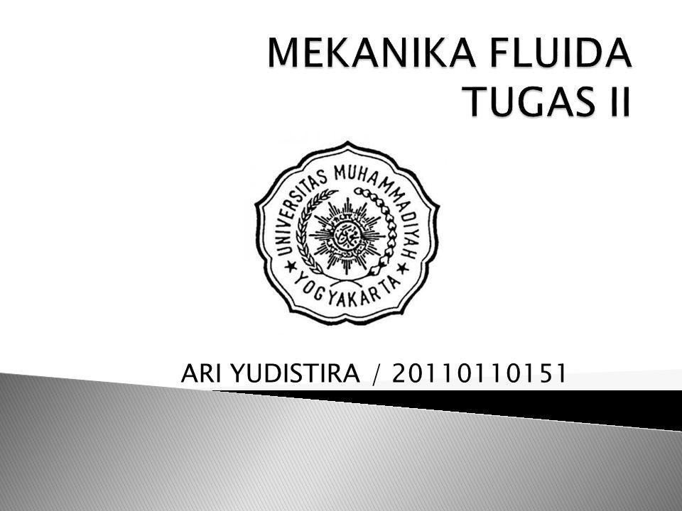 ARI YUDISTIRA / 20110110151